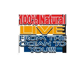 100 percent natural live sand